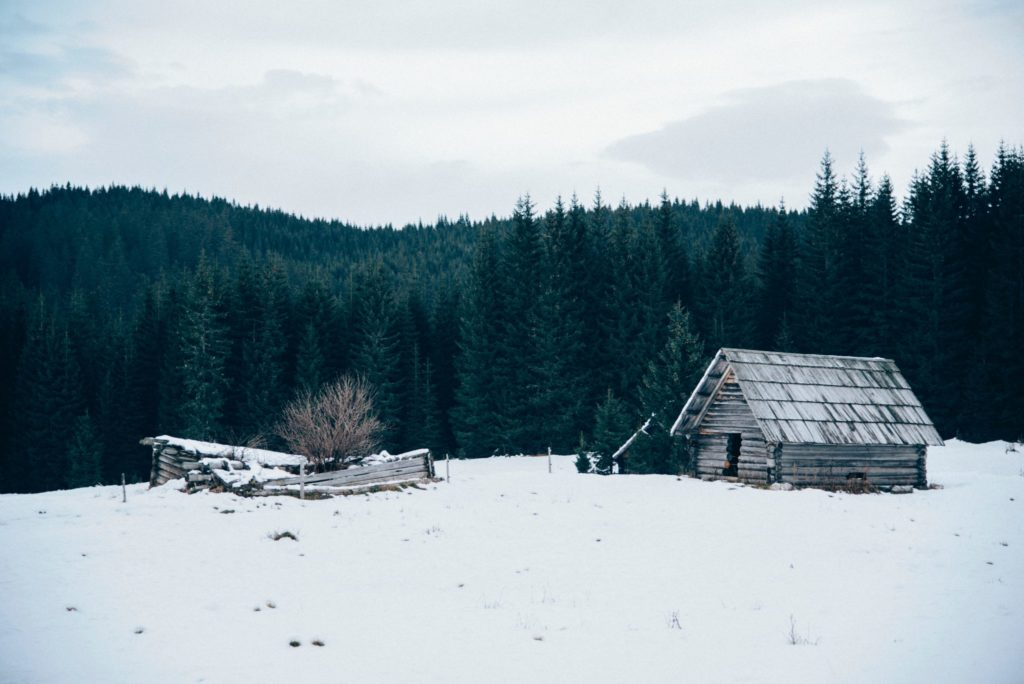 Russian Mountain Holidays (RMH) | Climbing Mt. Belukha